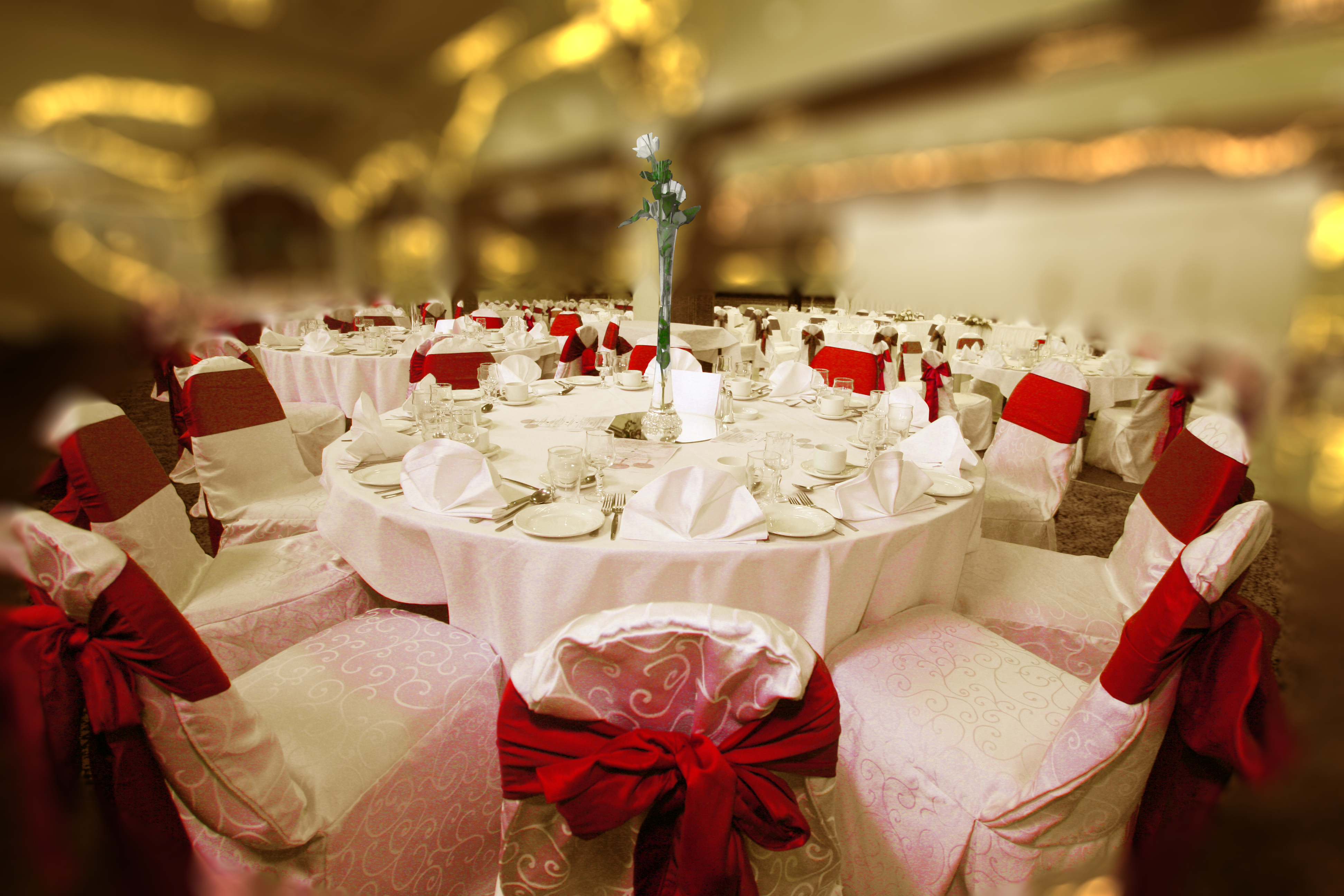 TAKING BOOKING FOR CHRISTMAS PARTY NIGHTS